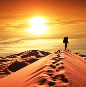 desert pict